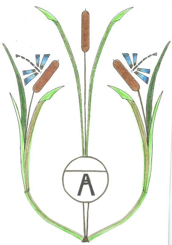 cattail motif